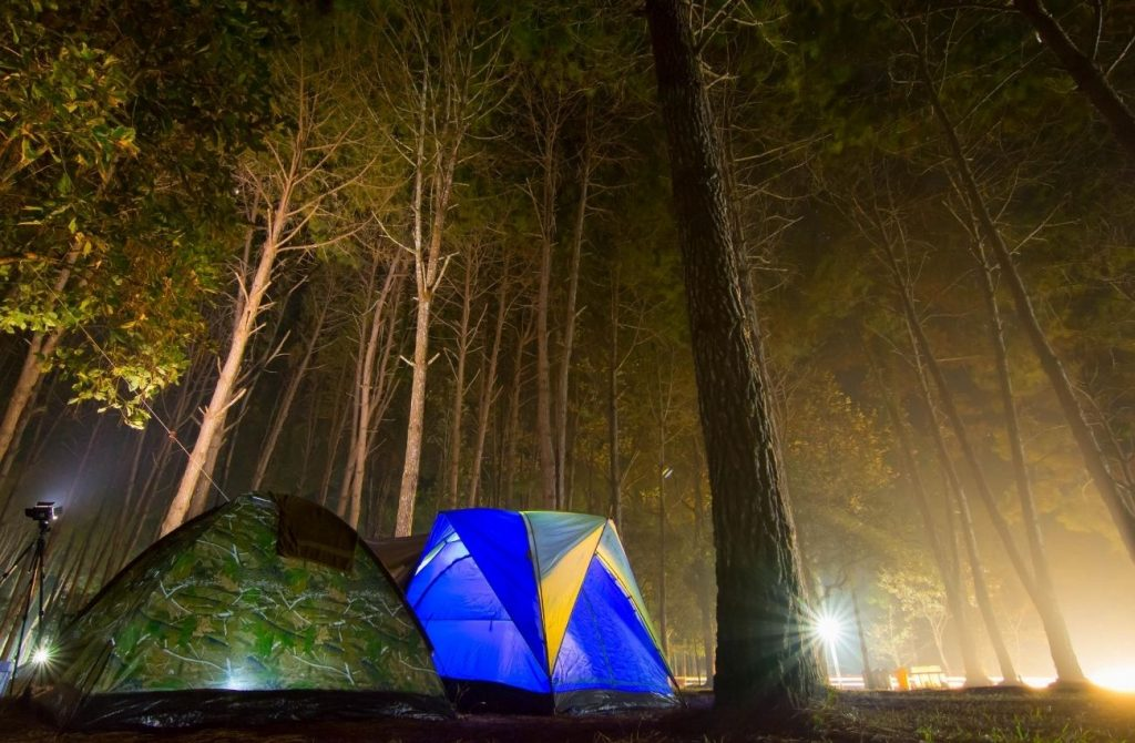 Nightime Boondocking camping in the National Forest