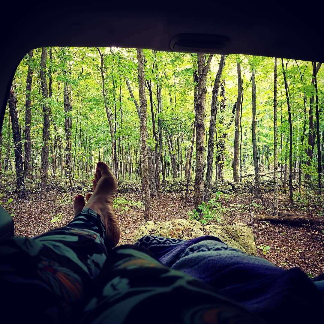 Car camping in a forest campground