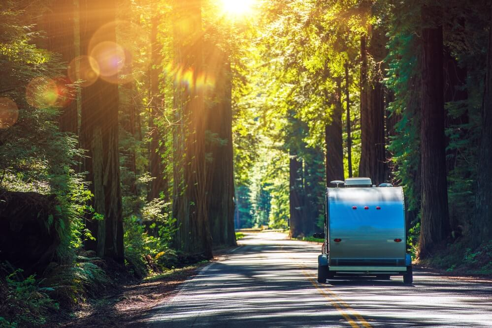Camper RV travel trailer towed in the Redwoods in California
