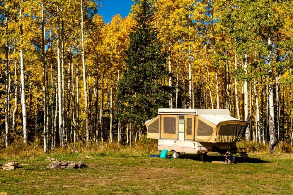 Pop up camper trailer parked in campsite in changing yellow Aspen tree forest on sunny fall morning in Aspen, Colorado